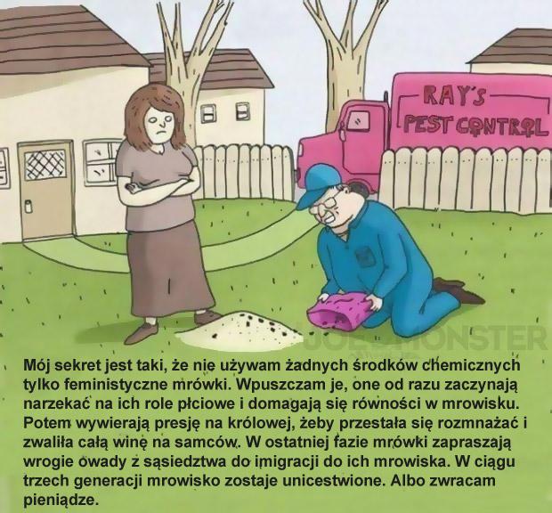 Mój sekret jest taki, że nie używam żadnych środków chemicznych tylko feministyczne mrówki. Wpuszczam je, one od razu zaczynają narzekać na ich role płciowe i domagają się równości w mrowisku. Potem wywierają presję na królowej, żeby przestała się rozmnażać i zwaliła całą winę na samców. W ostatniej fazie mrówki zapraszają wrogie owady z sąsiedztwa do imigracji do ich mrowiska. W ciągu trzech generacji mrowisko zostaje unicestwione. Albo zwracam pieniądze.