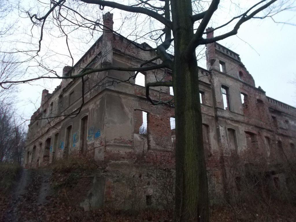 Zrujnowany pałac - Mietków