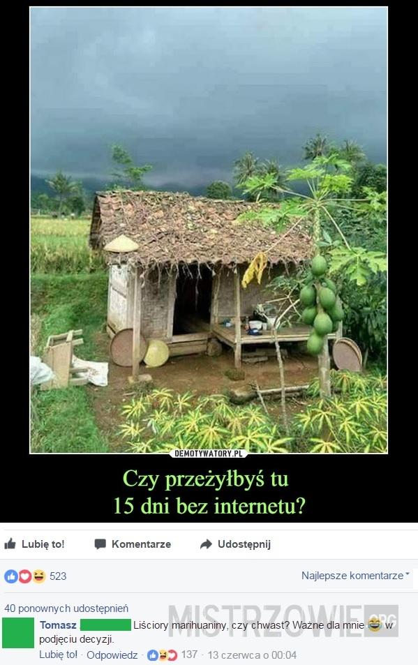 15 dni bez internetu –