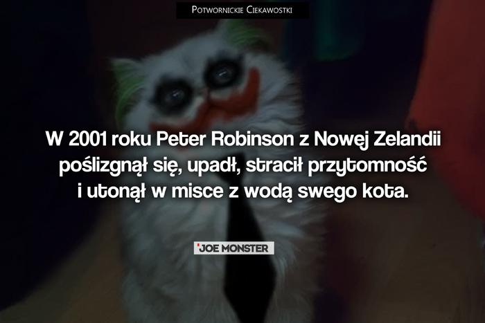 W 2001 roku Peter Robinson z Nowej Zelandii poślizgnął się, upadł, stracił przytomność i utonął w misce z wodą swego kota.