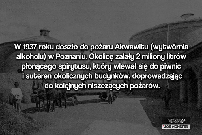 W 1937 roku doszło do pożaru Akwawitu (wytwórnia alkoholu) w Poznaniu. Okolicę zalały 2 miliony litrów płonącego spirytusu, który wlewał się do piwnic i suteren okolicznych budynków, doprowadzając do kolejnych niszczących pożarów.