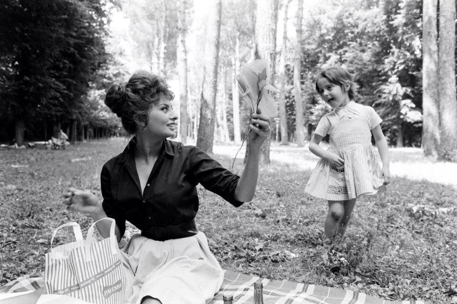 Sophia Loren Uosobienie Kanonu Piękna Sprzed Ponad Połowy