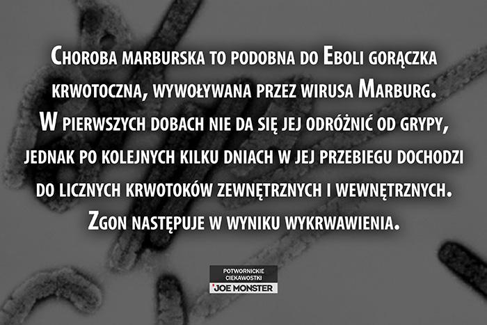 Choroba marburska to podobna do Eboli gorączka krwotoczna, wywoływana przez wirusa Marburg. W pierwszych dobach nie da się jej odróżnić od grypy, jednak po kolejnych kilku dniach w jej przebiegu dochodzi do licznych krwotoków zewnętrznych i wewnętrznych. Zgon następuje w wyniku utraty krwi.