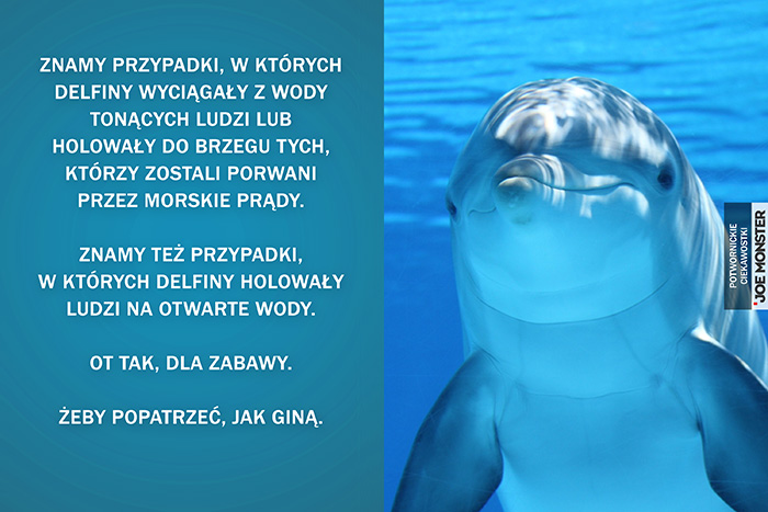 Znamy przypadki, w których delfiny wyciągały z wody tonących ludzi, lub holowały do brzegu tych, którzy zostali porwani przez morskie prądy. Znamy też przypadki, w których delfiny holowały ludzi na otwarte wody. Ot tak dla zabawy. Żeby popatrzeć, jak giną.