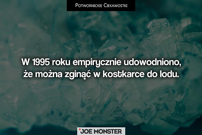 W 1995 roku okazało się, że można zginąć w kostkarce do lodu.
