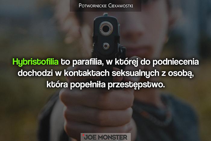 Hybristofilia to parafilia, w której do podniecenia dochodzi w kontaktach seksualnych z osobą, która popełniła przestępstwo.