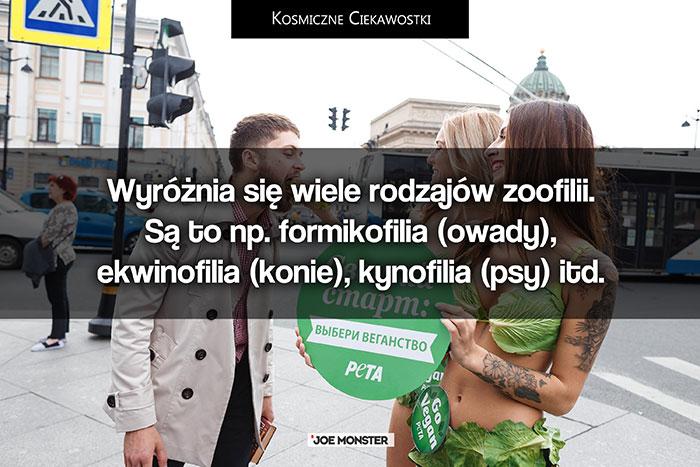 Wyróżnia się wiele rodzajów zoofilii. Są to np. formikofilia (owady), ekwinofilia (konie), kynofilia (psy) itd.