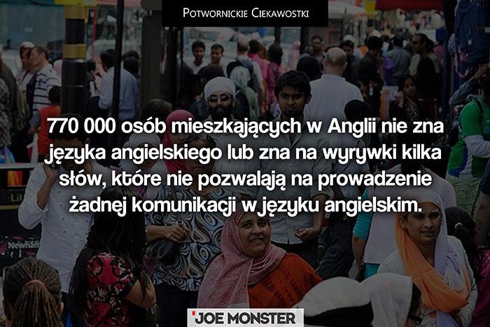 770 000 osób mieszkających w Anglii nie zna języka angielskiego lub zna na wyrywki kilka słów, które nie pozwalają na prowadzenie żadnej komunikacji w języku angielskim.