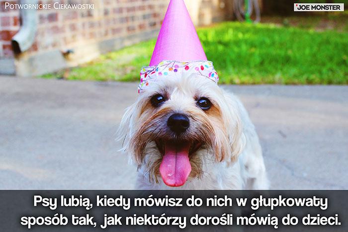 Psy lubią, kiedy mówisz do nich w głupkowaty sposób tak, jak niektórzy niezrównoważeni dorośli mówią do dzieci.