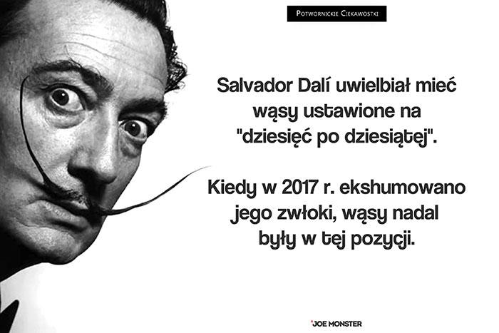 Salvador Dalí uwielbiał mieć wąsy ustawione na