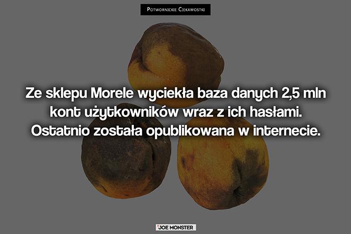 Ze sklepu Morele wyciekła baza 2,5 mln kont wraz z ich hasłami. Ostatnio została opublikowana w internecie.