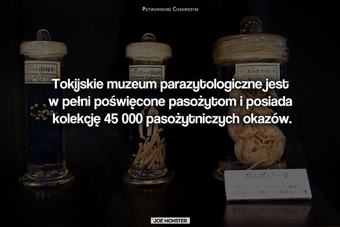 Tokijskie muzeum parazytologiczne jest w pełni poświęcone pasożytom i posiada kolekcję 45 000 pasożytniczych okazów.