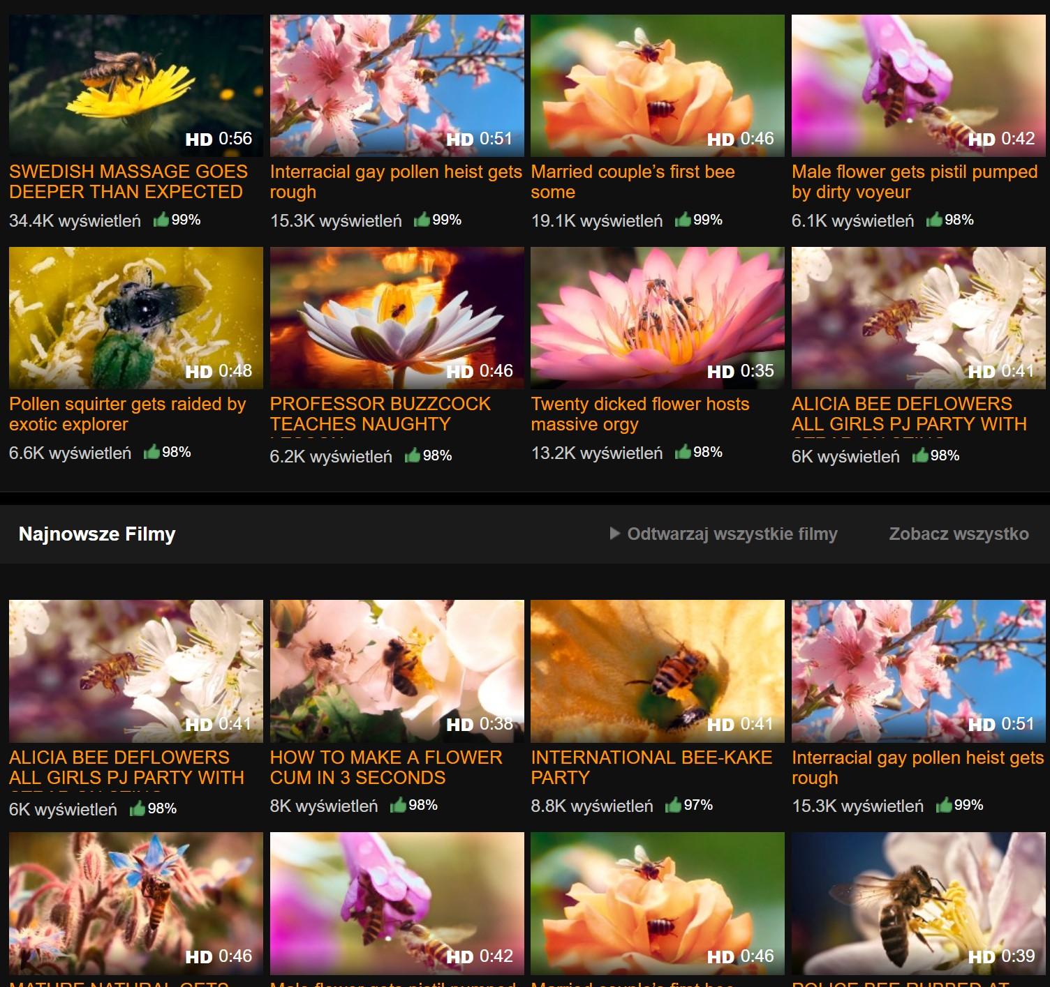 Na ratunek pszczołom! Znany serwis filmów bzykanych uruchamia akcję