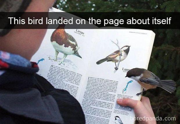Kliknij i zobacz więcej!