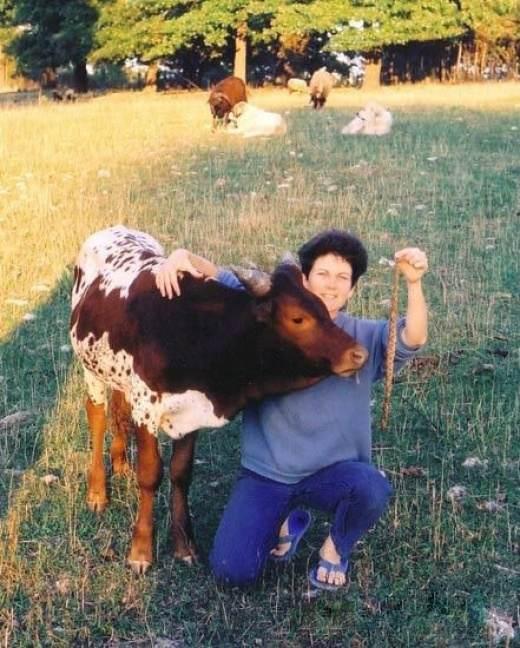 szalone krowy porno czarny but sex