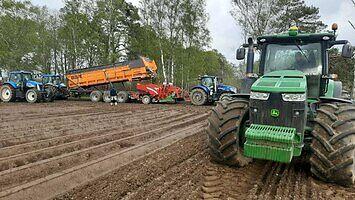 Jak wygląda obsadzenie 360 hektarów ziemniaków?