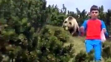 Zachowaj spokój, chłopcze, idzie za tobą wielki niedźwiedź