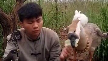 Co ludzie myślą, kiedy mówisz, że jesteś z Mongolii?