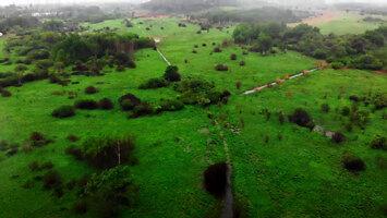 Łąki w deszczu. Retencja utracona