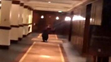 Nieoczekiwany gość hotelowy