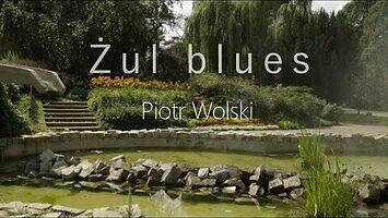 Piotr Wolski - Żul blues