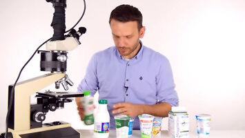 SciFun szuka żywych kultur bakterii w jogurcie