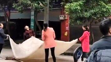 Chińczycy czekają na odbiór smażonego kota