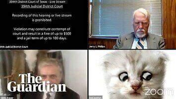 """""""Nie jestem kotem"""" - prawnik na spotkaniu z sędzią nie potrafił wyłączyć filtra w Zoomie"""