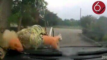 Babuszka ląduje na masce samochodu