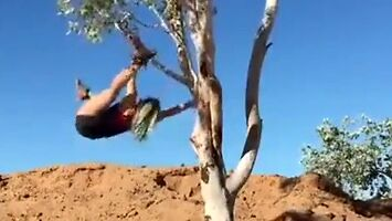 Krótki trening na drzewie