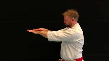 Karate na 2020