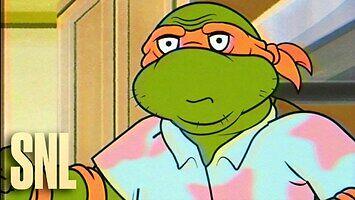 Wojownicze żółwie ninja (w średnim wieku)