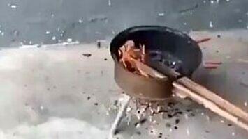 Dziki kucharz przyrządza rybę
