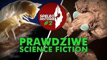 Kapsuła czasu sprzed 5 000 000 lat -  najciekawsza jaskinia na świecie!  Speleohistorie #2