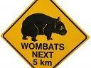wombat89