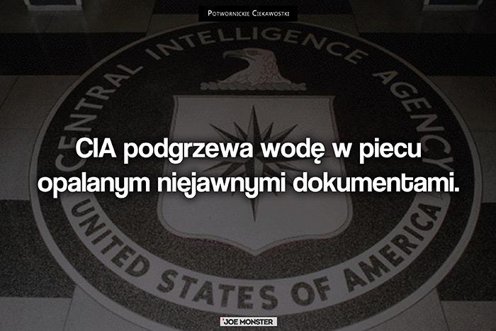 CIA podgrzewa wodę w piecu opalanym niejawnymi dokumentami.