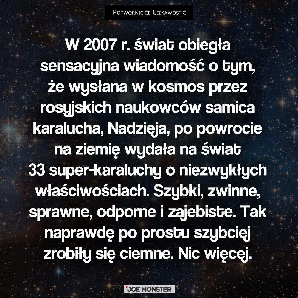 W 2007 r. świat obiegła wiadomość o tym, że wysłana w kosmos przez rosyjskich naukowców samica karalucha Nadzieja, po powrocie na ziemię wydała na świat 33 super-karaluchy o niezwykłych właściwościach. Szybki, zwinne, sprawne, odporne i zajebiste. Tak naprawdę po prostu szybciej zrobiły się ciemne. Nic więcej.