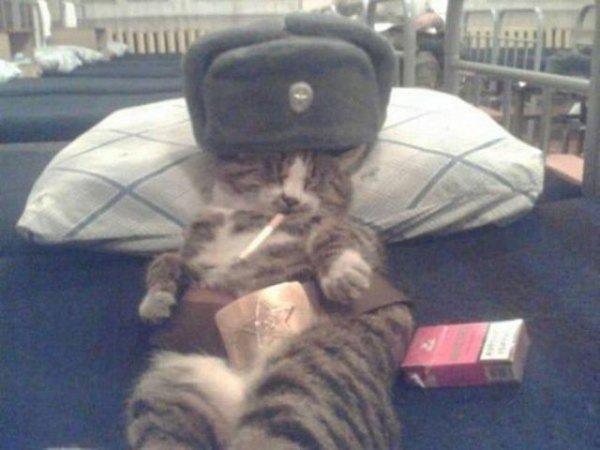 crazy-russian-photos-bizarre-42