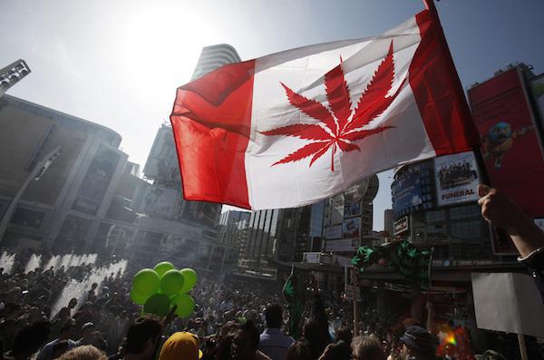 absorbing-facts-about-marijuana-20