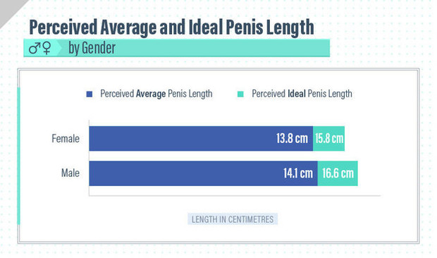 duży penis vs mała cipka www Indie xxx wideo com