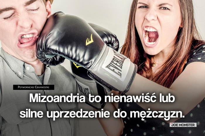Mizoandria to nienawiść lub silne uprzedzenie w stosunku do mężczyzn.