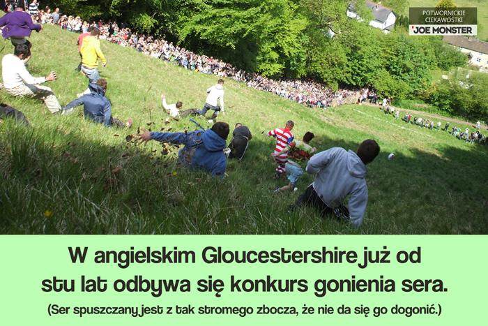 W angielskim Gloucestershire odbywa się konkurs gonienia sera. Ser spuszczany jest z tak stromego zbocza, że nie da się go dogonić.