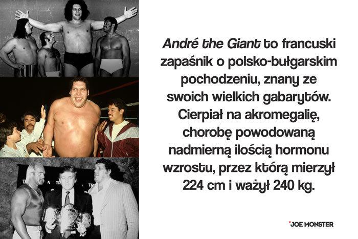André the Giant to francuski zapaśnik o polsko-bułgarskim pochodzeniu, znany ze swoich wielkich gabarytów. Cierpiał na akromegalię, chorobę powodowaną nadmierną ilością hormonu wzrostu, przez którą mierzył 224 cm i ważył 240 kg.