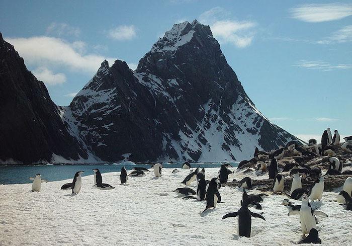 7 potwornie zimnych ciekawostek o Antarktydzie