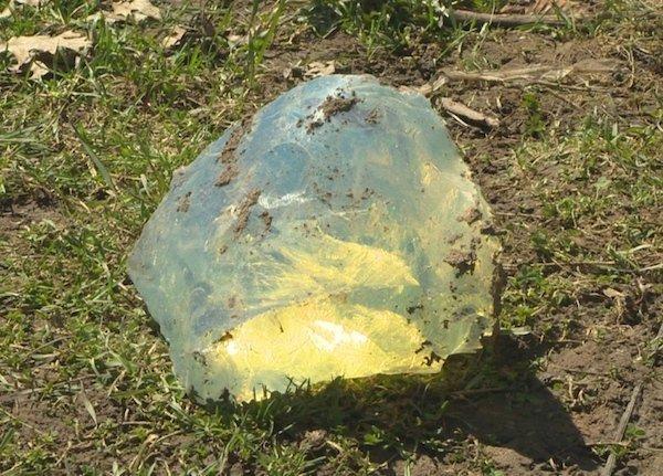 Przedziwne rzeczy, które ludzie wykopali w ogródku
