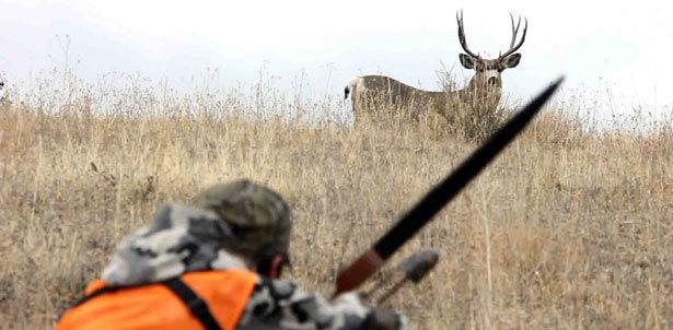 Znalezione obrazy dla zapytania hunting