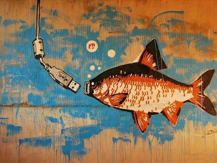 Na co najlepiej bierze ryba