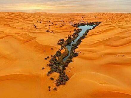 Oaza na pustyni w Libii