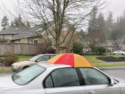 Ludzie z popsutym szyberdachem podczas deszczu