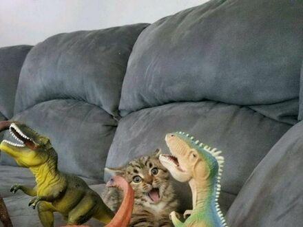 Witamy w Jurassic Parku